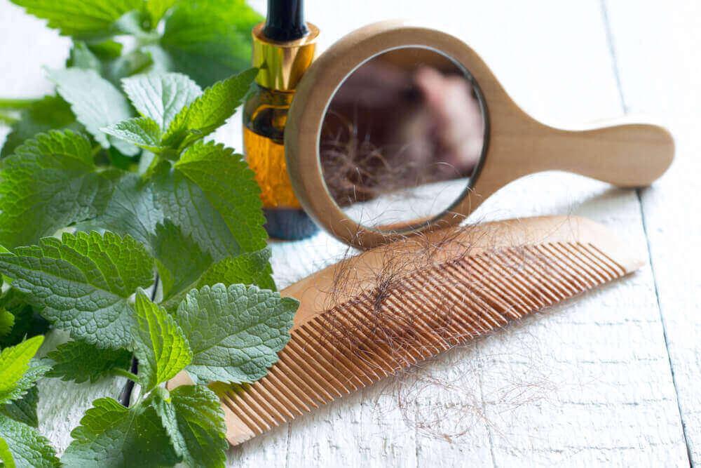 kopriva za opadanje kose