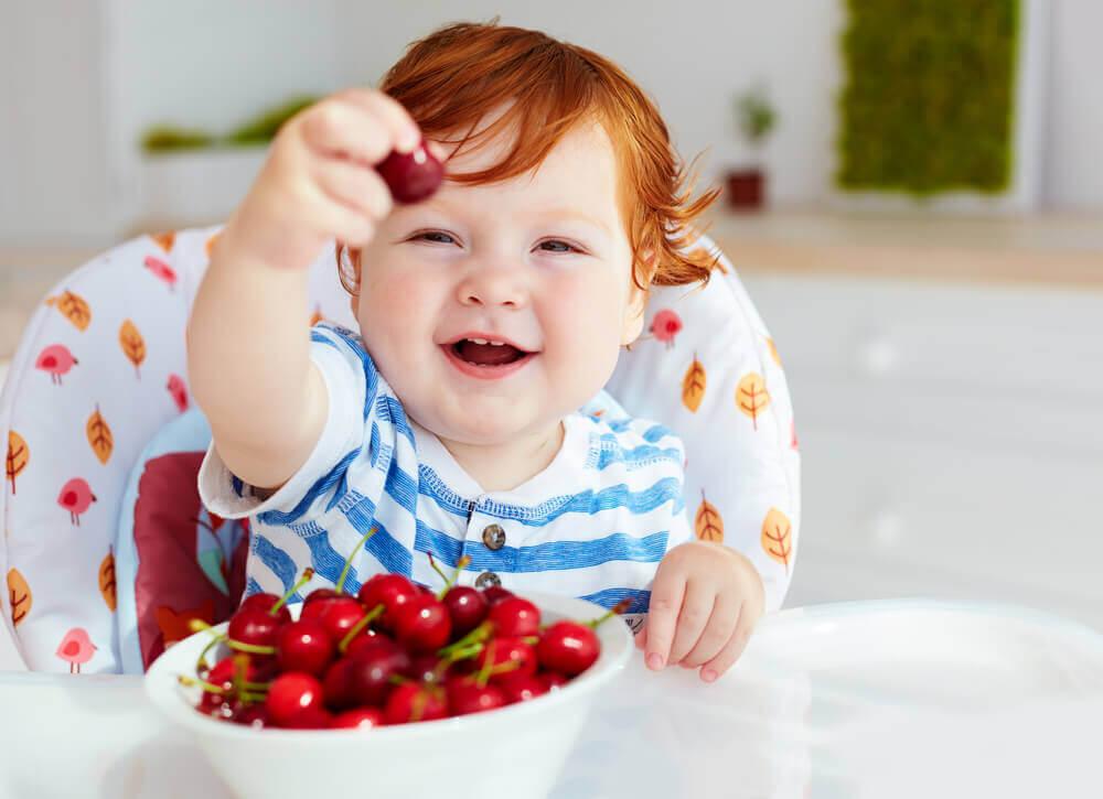 trešnje u dečijoj ishrani (1)